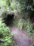 Tunnel Hiking?