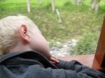A sleepy Luke on the ride home
