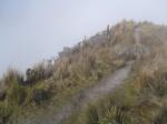 The peak of Fuya-Fuya