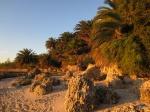 Neat Beach